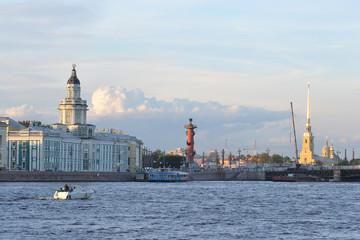 Cabinet of curiosities in St.Petersburg