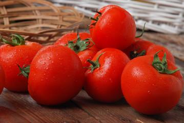 tomato tomatoes