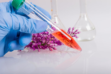 extraction of natural ingredients in perfumery