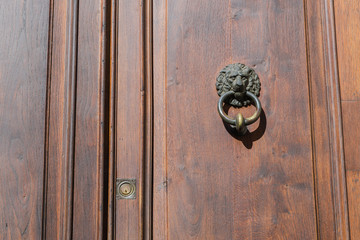 old knocker on door