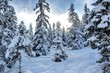 Beautiful Winter Scenery. Skiing Resort Zillertal Arena, Austria