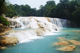 Fototapety Cascada de Agua Azul, Chiapas, México