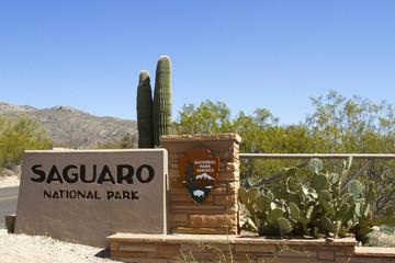 Saguaro Entrance