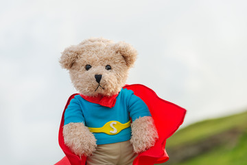 superhero bear