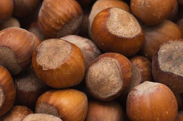 nuts, hazelnuts
