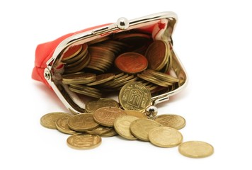 Purse and coins