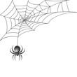 Leinwanddruck Bild - Black spider with web background