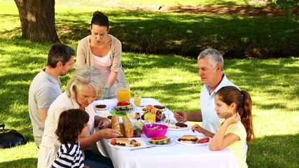 Happy family having a barbecue in the park together