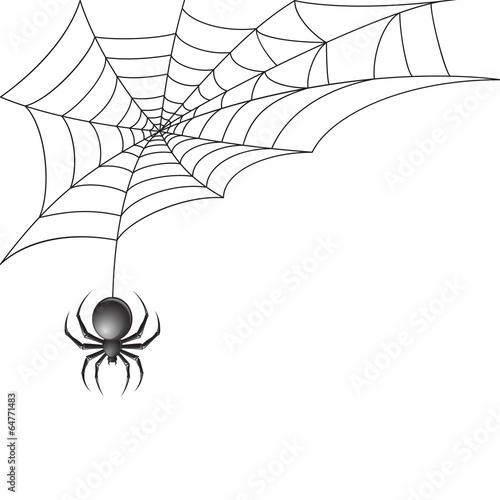 Fototapeta Black spider with web background