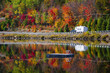 Highway through fall forest - 64775686