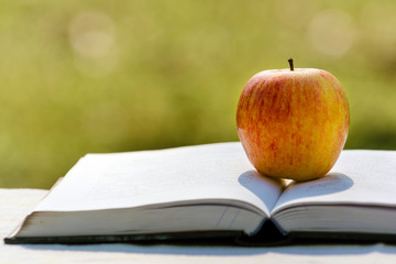 Apple on pile of book