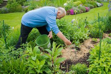 Senior bei der Gartenarbeit