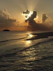Tropical Paradise - The Maldives