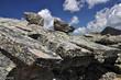 Felsen im Gebirge