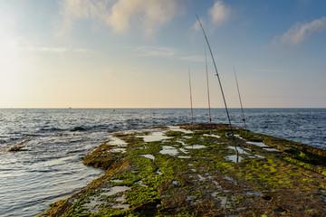 Cañas de pesca 2