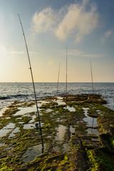 Cañas de pesca 1