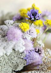 Wildblumen,