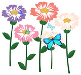 Blooming flower with butterflies