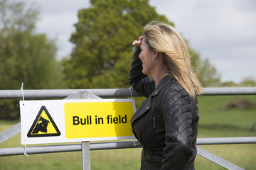 Woman looking over farm gate with Bull in field sign displayed
