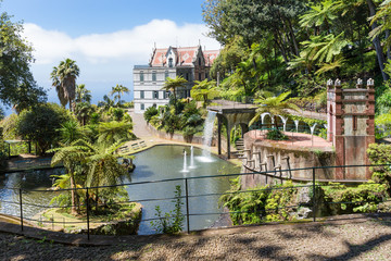 Tropical garden at Funchal,  Madeira island, Portugal