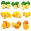 Collection of lemon, lime and orange