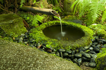 Japanese water bamboo fountain