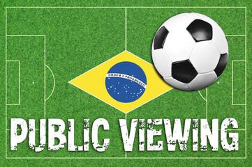 Fußballfeld mit Fußball und Public Viewing