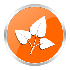 leaf orange glossy icon