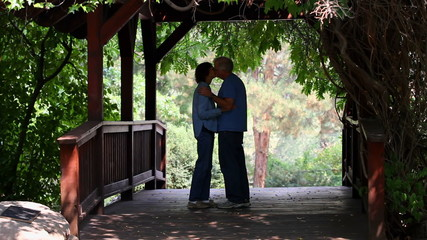 Romantic Seniors On Footbridge