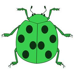 緑色のてんとう虫