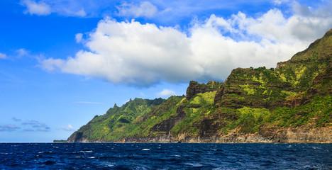 Green Kauai Coastline