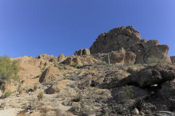 Sonoran Upland Natural Area, AZ