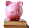 piggy bank  and book isolated white background