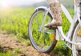 Rower na polnej ścieżce - 64812465