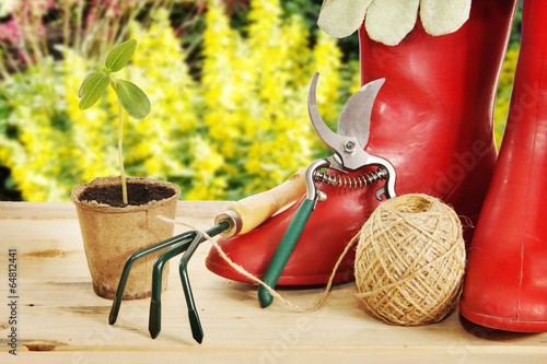 Garden tools with rubber boots and seedling - 64812441