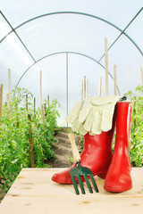 Garden rake and red rubber boots in a greenhouse