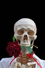 Morte con la rosa in bocca