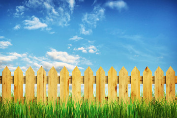 Vivid summer landscape with wooden fence and green grass