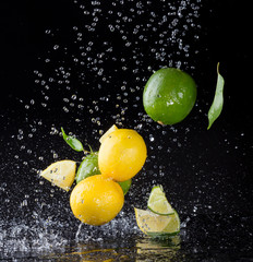 Citrus fruit in water splash on black background
