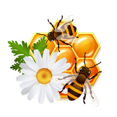 Honeycomb bee flowers emblem