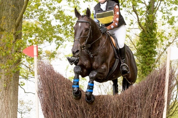Horse and rider jumping a fence at a show jumping event