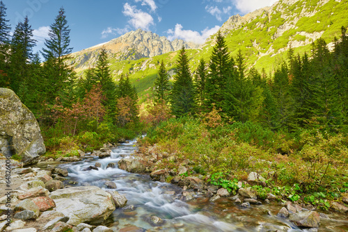 Zdjęcia na płótnie, fototapety na wymiar, obrazy na ścianę : The Roztoka Stream. The High Tatras, Carpathian Mountains.