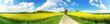 Leinwanddruck Bild - Panoramaaufnahme Rapsfeld und Weg