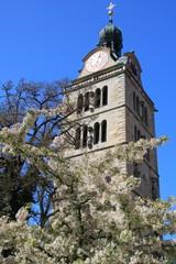 Primavera a Ratisbona