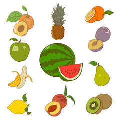 Collection of colorful fruins