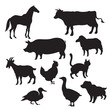 Silhouettes of domestic animals