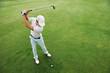 Golf shot - 64829895