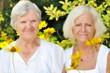 Senior and mature women in garden full of flowers.
