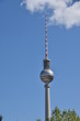 canvas print picture - Der  Funkturm in Berlin