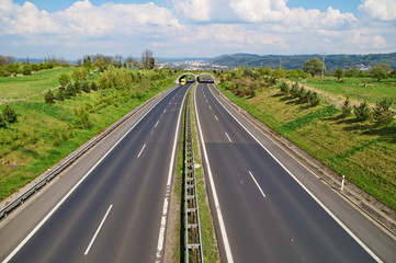 Corridor highway with the transition for wildlife